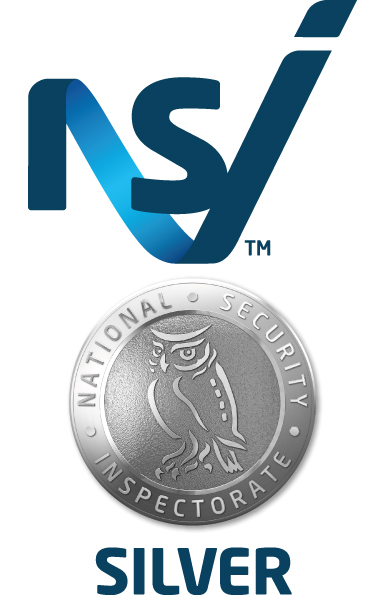 Logo - Print - NSI Silver - Colour